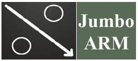 Jumbo ARM Loans